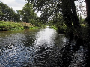 smooth river looking downstream with bank and trees