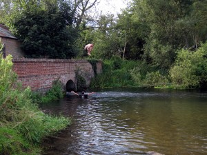 bridge with boy mid jump into water below
