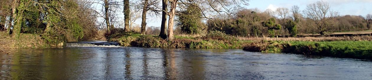 Imogen's River Swims