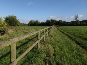 field with fence across and path beside