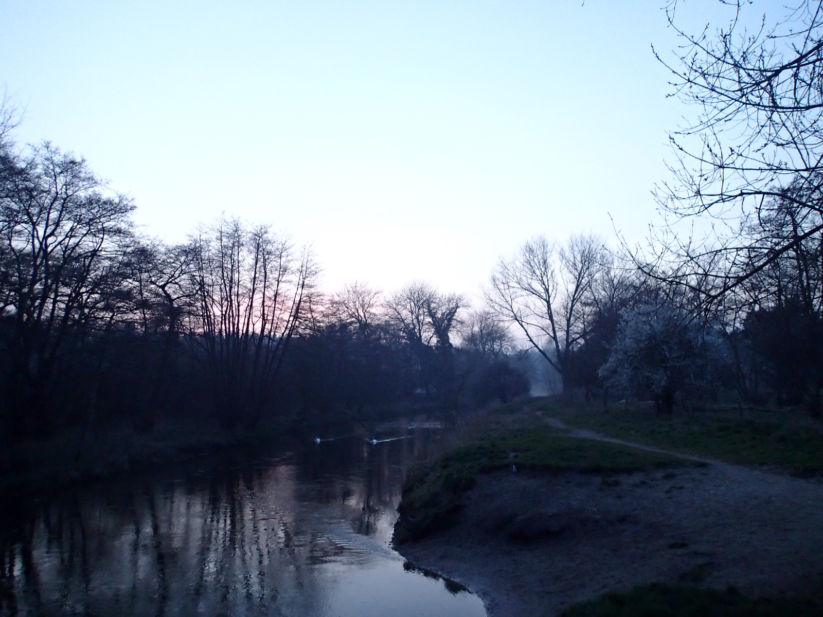 river at sunset with mist and trees
