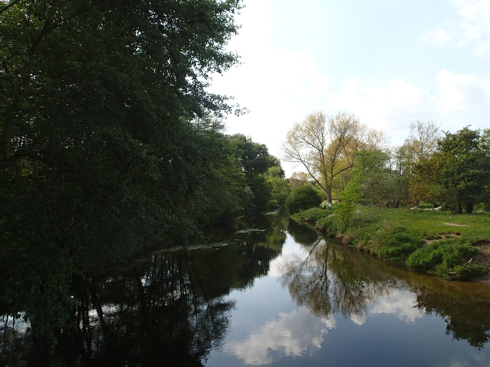 view of the river with reflections and trees
