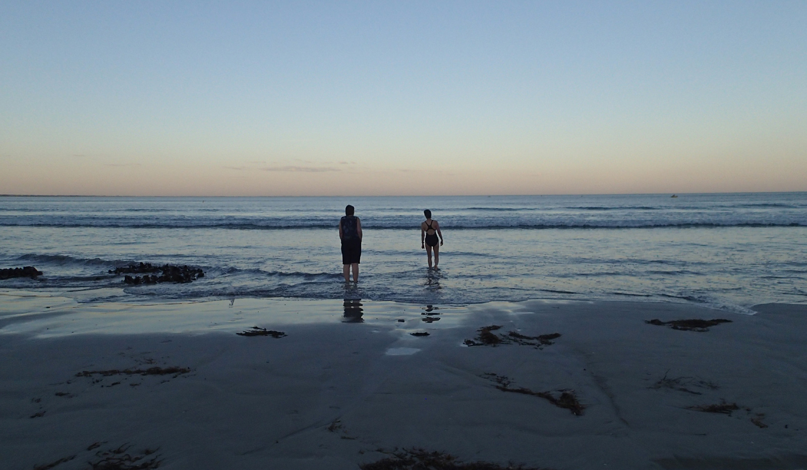 Paddler and swimmer in calm sea in twilight