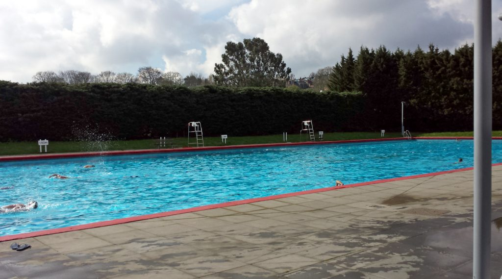 outdoor pool with big hedge