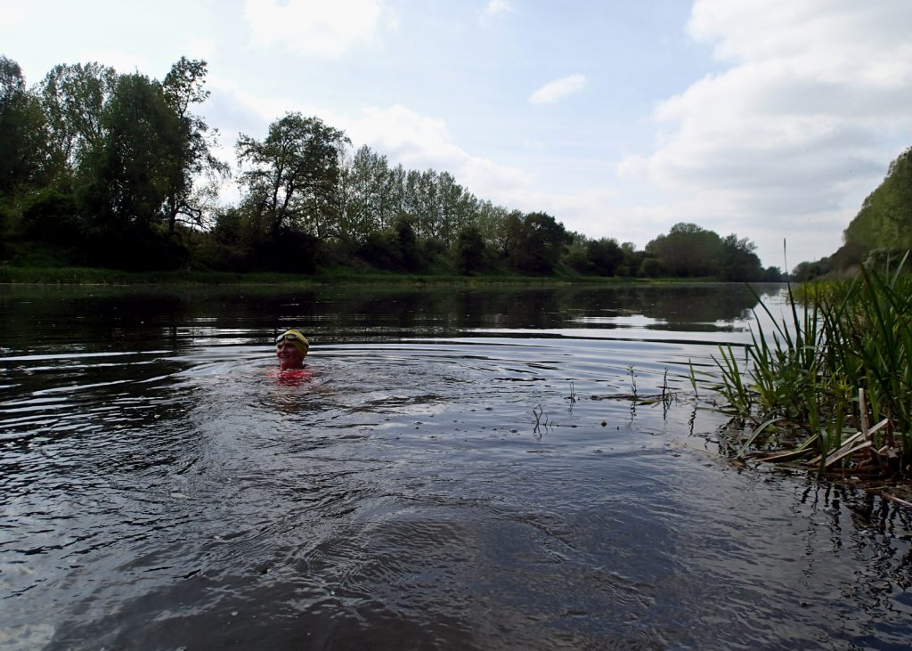 swimmer in river with trees and bank