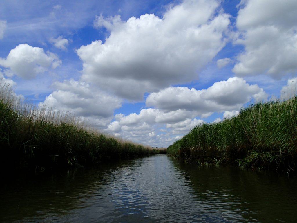 narrow river with reeds both sides, dramatic clouds in sky