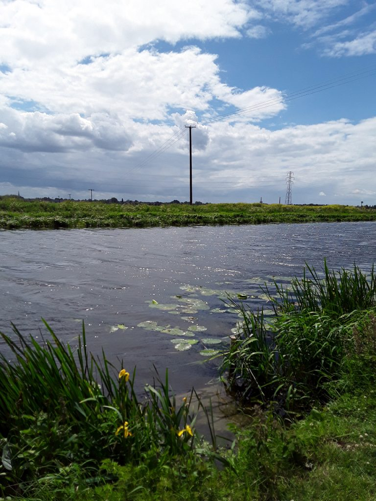 river and sky and plants