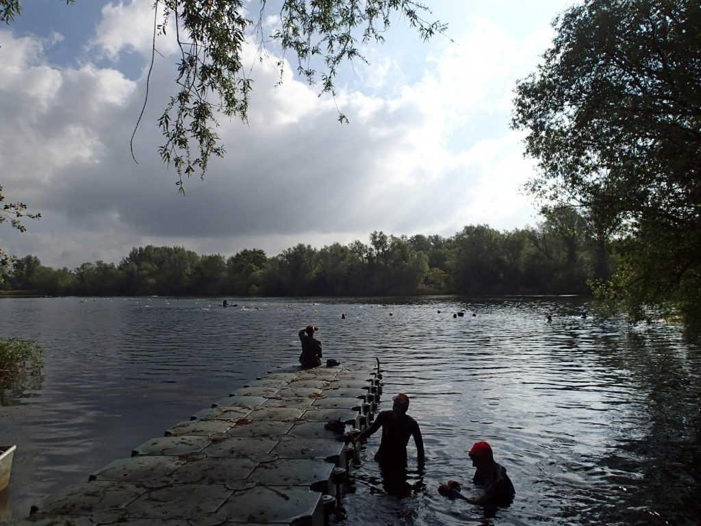 swimmers in lake, trees