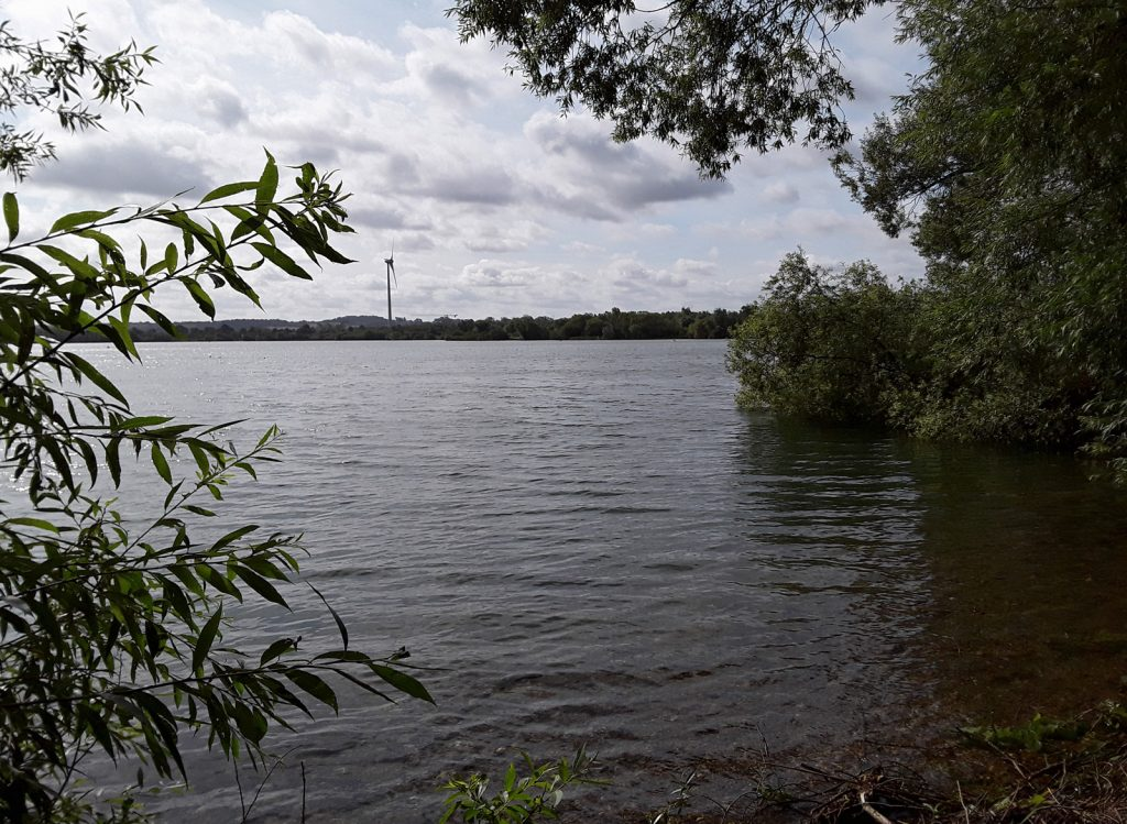 lake with shallow beach and trees