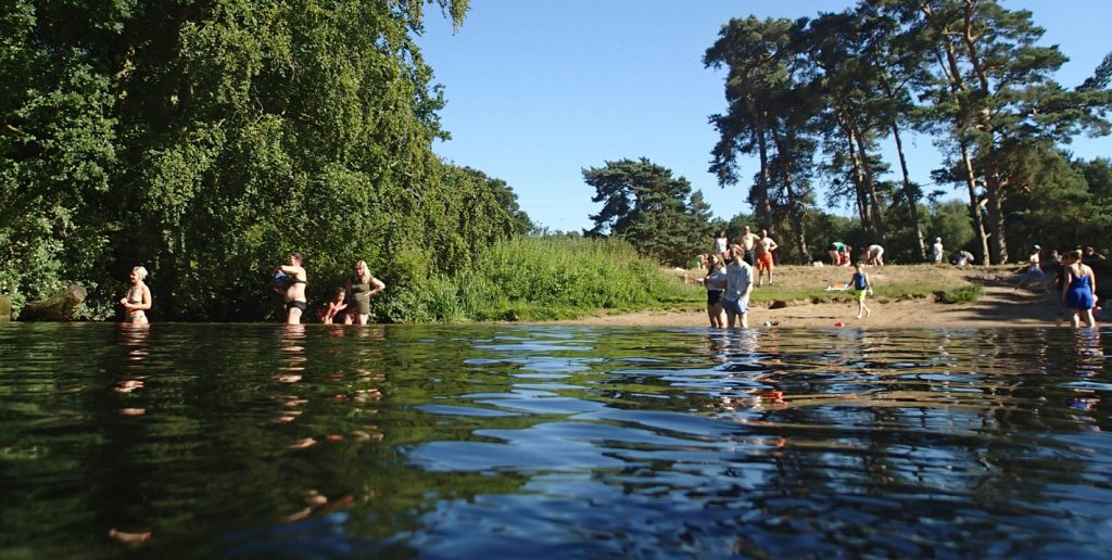 many adult and child swimmers in a river