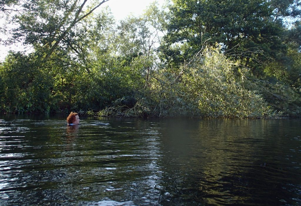 swimmer in wooded river