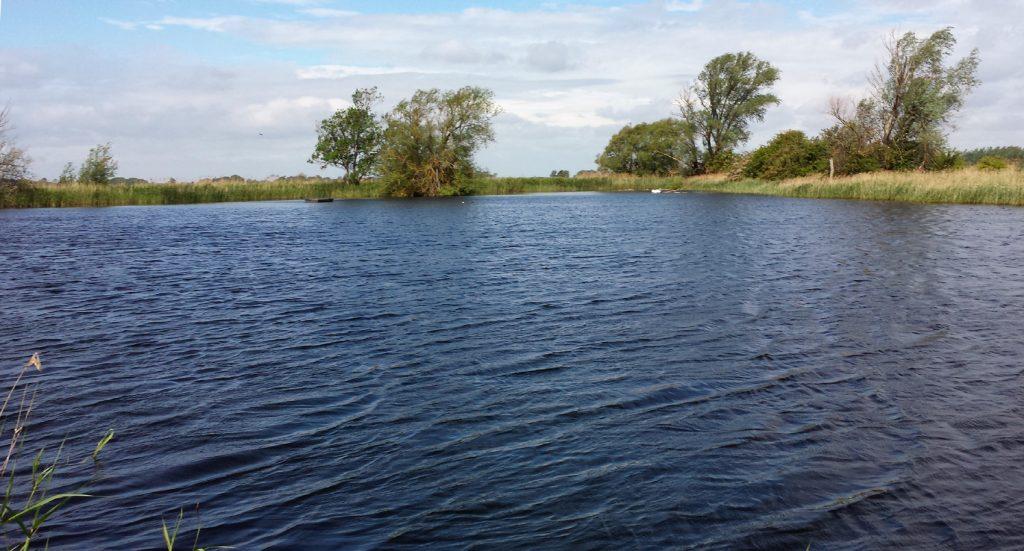 wind-ruffled water