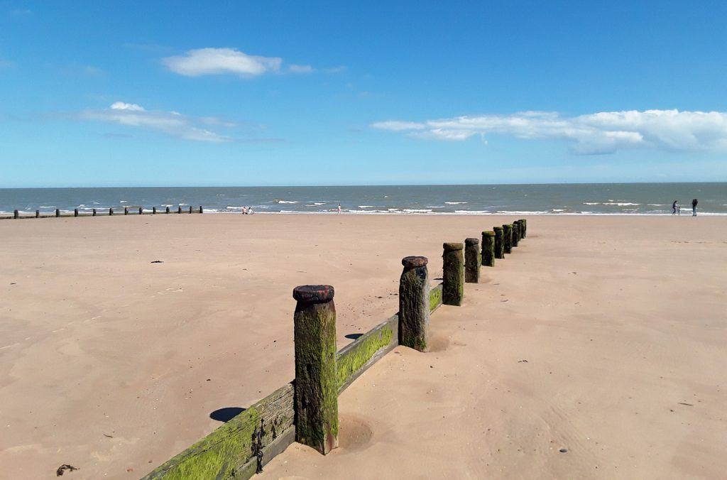 groynes and sandy beach and sea